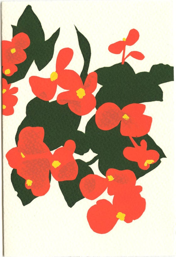 Image of Bagonias card