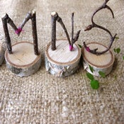 Image of 6 twig letters