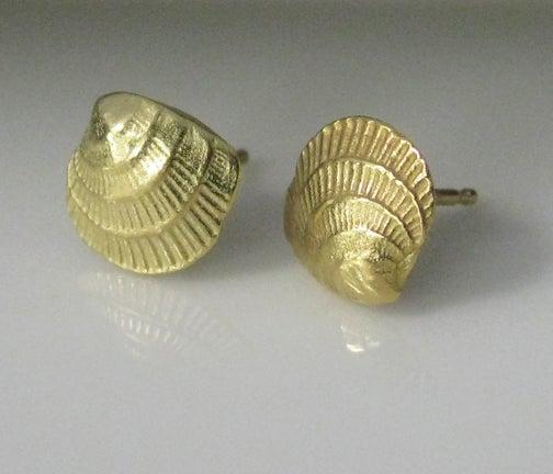 Image of Cross Barred Venus 18k Gold Seashell Earrings