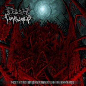 """Image of """"Ecliptic Dimensions Of Suffering"""" LP (2010), OR """"Mutilate, Eviscerate, Decapitate"""" LP (2008)"""