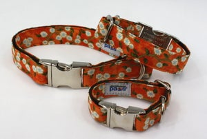 Image of Adeline Cherry Blossoms Dog Collar in the category  on Uncommon Paws.