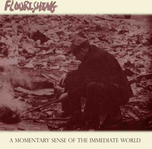 "Image of Flourishing ""A Momentary Sense Of The Immediate World"" CD"