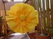 Image of Sunny Flower Hairband