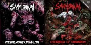 Image of SANATORIUM - Celebration Of Exhumation/Internal Womb Cannibalism 2CD