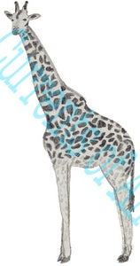 Image of Giraffe: Art for your Blog / Banner- get it within 24hrs