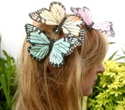 Image of Giant Butterfly Hairclips SOLD OUT