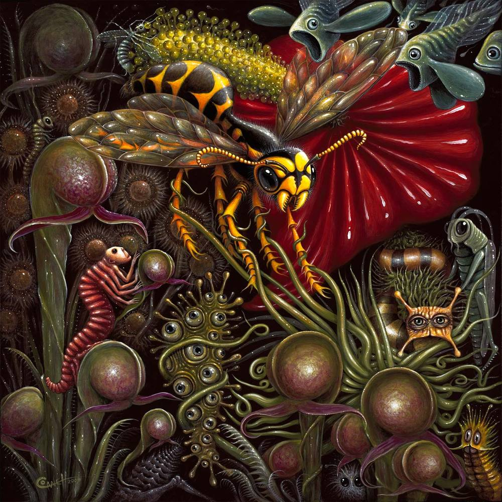 """Image of """"FLORA vs FAUNA""""   ~ 18 x 18"""" Open Signed Edition"""