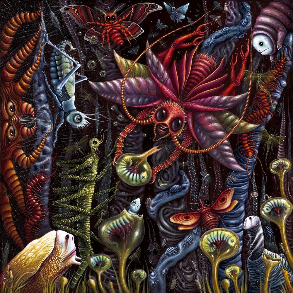 """Image of """"INSECTUS""""   ~ 20 x 20"""" Signed Open Edition"""
