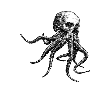 Image of octoskull t-shirts