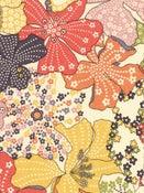 Image of Liberty Mauvey multicolore / coupon de 50 cm
