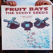 Image of TSS + Fruitbats Concert Poster 18˝x24˝