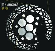 "Image of Life in Monochrome (12"" Vinyl Album)"