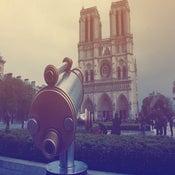 Image of Notre Dame - Vintage