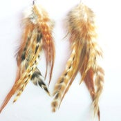 Image of Grizzly Earthtone Feather Earrings