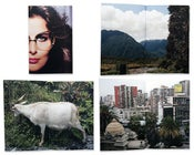 Image of some photographs taken during a trip to chile