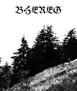 Image of BHEREG - demo cs