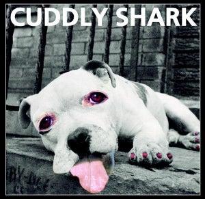 Image of Cuddly Shark
