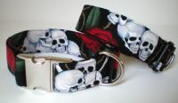 Image of Beastie Skulls Dog Collar in the category  on Uncommon Paws.