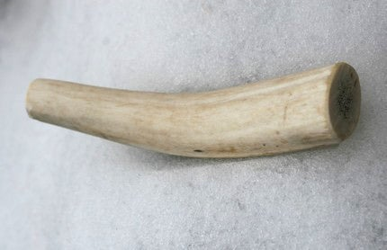 Image of SMALL & MINI Elk Antler Chew Toy