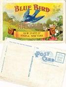 Image of 25 blue bird antiques postcards
