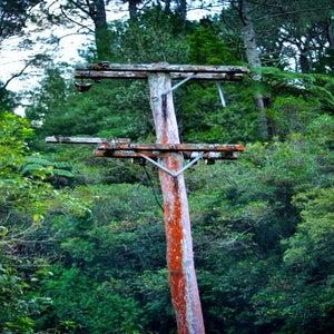 Green Pole NZ