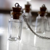 Image of Dandelion Vial Pendant Necklace