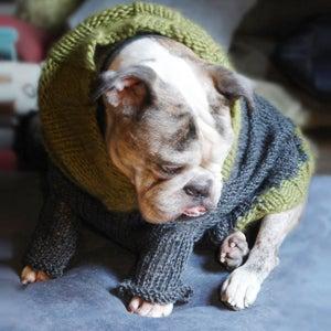 Image of turtlesweater