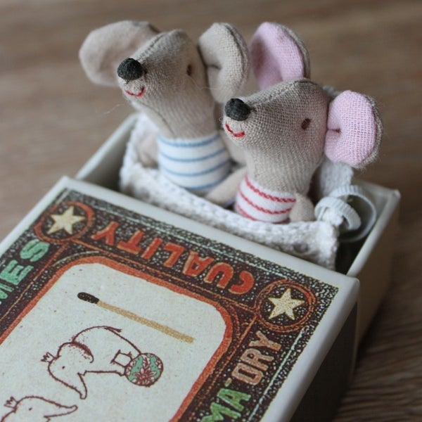 Image of Newborn Twins In Sleeping Bag And Matchbox