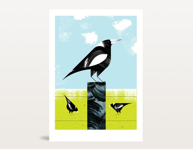 Image of Magpies