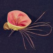 Image of P03  Bellflower