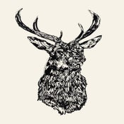 Image of STAG HEAD MMXII