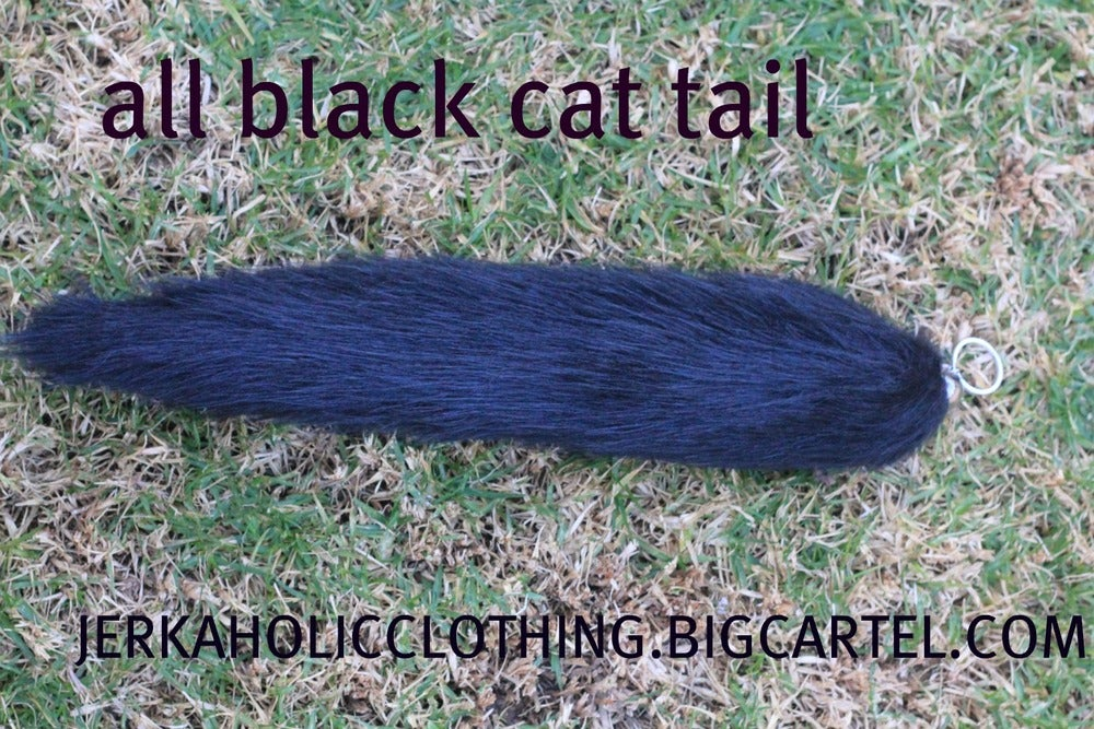 Image of black CAT TAIL