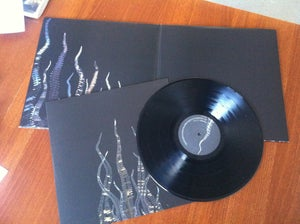 Image of Pelican 'City of Echoes' LP