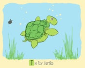 Image of T is for Turtle Alphabet Nursery Print