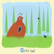 Image of Q is for Quail Alphabet Print