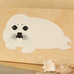 Image of Harp Seal Baby