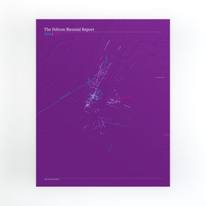 Image of Feltron 2010/2011 Biennial Report