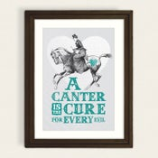 Image of A Canter Is The Cure
