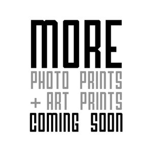 Image of MORE Coming Soon!