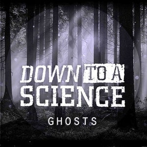 Image of 'Ghosts' CD Single by Down To A Science
