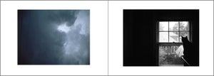 Image of daydream - set of 6 folded cards w/ envelopes