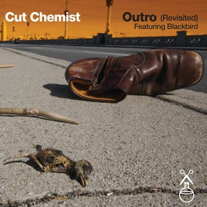 """Image of Outro (Revisted) feat. Blackbird 7"""" Single"""