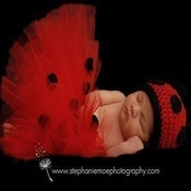 Image of Ladybug Tutu and Crochet Hat Set