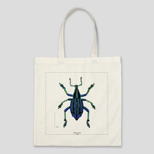 Image of Scientific Illustration of a beetle on a canvas bag!