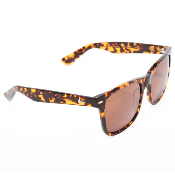 Image of Autumn 2012 Cali Sunglasses