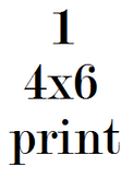 Image of 1 4x6 print