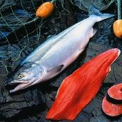 Image of Add On:: fresh -- Wild AK Copper River Sockeye Salmon - Whole Side Fillet - sold by each