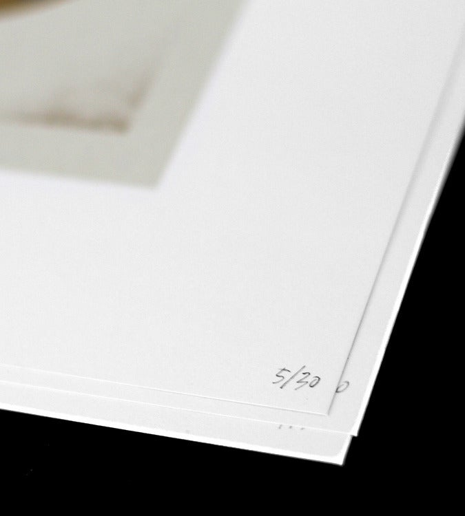 Image of Gold Shapes Silkscreen Print
