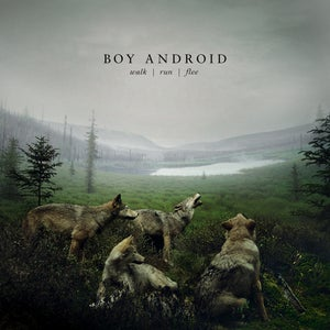 Image of CD - Walk/Run/Flee (2012)