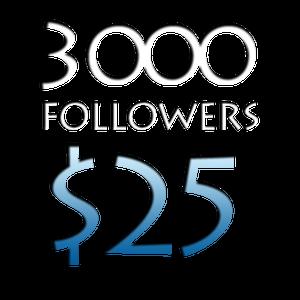 Image of 3000 Worldwide Twitter Followers